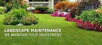 K-Town  Landscaping     (Yard work & Snow Removal )