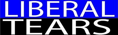 Best Funny Bumper Sticker Auto Decal Conservative Republican Liberal (Best Liberal Bumper Stickers)