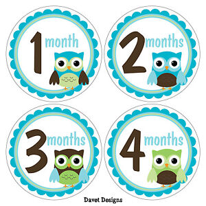 12-Monthly-Baby-Milestone-Stickers-Baby-Month-Owl-Theme-Sticker-M031-02