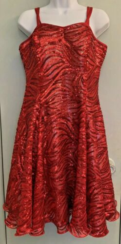 Dance Sophistics Red Sequin Dress Semi Sheer Silver Lined Sz 16 Heavy Bra Bodice