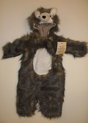 Pottery Barn Kids Halloween Woodland Baby Hedgehog Costume 6 - 12 Months #720 - Baby Hedgehog Costume