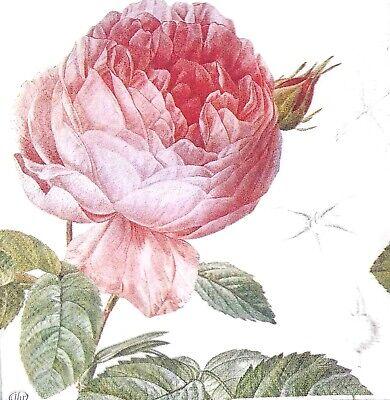 3x Single SMALL Paper Napkins For Decoupage Tissue Garden Roses Flowers S026