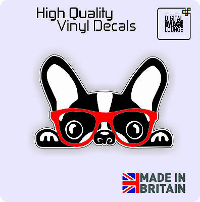 FRENCH BULLDOG CAR STICKER - DECAL - BUMPER - WINDOW - VINYL - FUNNY NOVELTY DOG