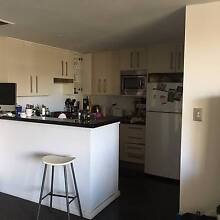 1 Bedroom; convenient location; $300 p/wk + bills Waterloo Inner Sydney Preview