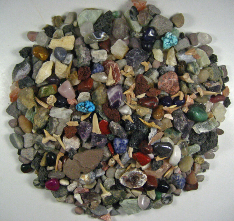ROCK AND MINERAL COLLECTION-OVER150 PCS & BUFFALO NICKEL-Fun Treasure Hunt