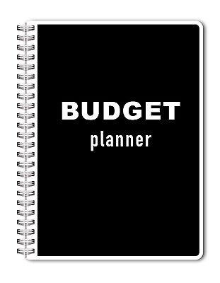 2019 -2020 Budget Planner, Bill Organizer, Monthly, Personal
