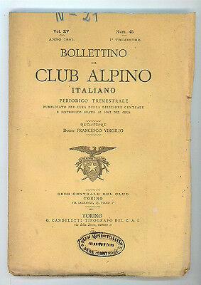 BOLLETTINO DEL CLUB ALPINO ITALIANO N. 45 VOL. XV 1° TRIMESTRE 1881 MONTAGNA