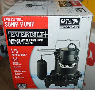 Everbilt 13 Hp Cast Iron Sump Pump Hds30 W Float Switch 1000 041 119
