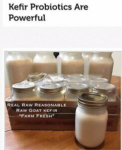 Raw goat milk kefir for your skin !! Or pets