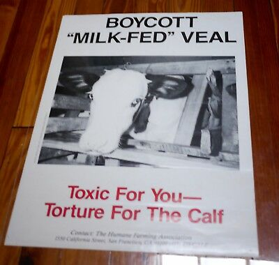 Vintage Humane Farming BOYCOTT MILK FED VEAL Vegan Animal Rights Activist POSTER