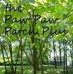Paw Paw Patch Plus