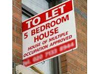 5 bedroom HMO flat to let - available now