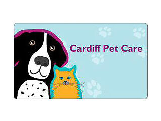 Registered and insured pet sitter and dog walking business