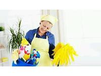 Domestic / office/ End of tenancy Cleaning Services