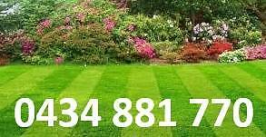 FROM $25 lawns,hedges,trees,weeds,gutters,pressure washing,taps Blacktown Blacktown Area Preview
