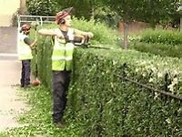 Grounds Maintenance and Landscaping Job- Kensington and Chelsea, London-W10- Immediate Start