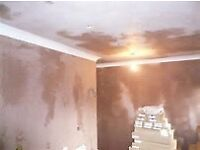 I'm a plasterer looking for work