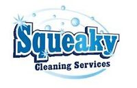 Most affordable cleaners in town (home or business) $15/hour+