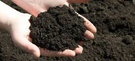 Topsoil - Screened & Conditioned