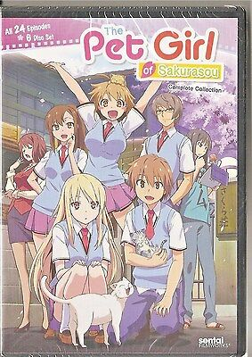 Pet Girl Of Sakurasou  Complete Anime Collection Dvd  2015  6 Disc Set Brand New