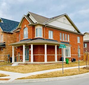 For Rent 4 bed Furnished full house Mt Pleasant Brampton