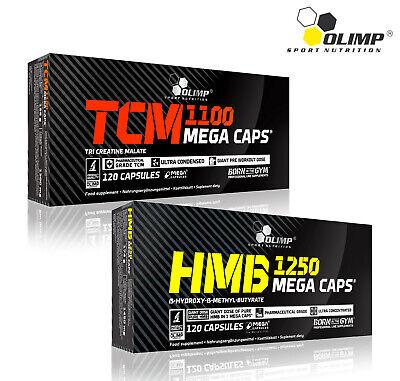 TCM CREATINE MALATE + HMB - Lean Muscle Mass Builder Anticatabolic Fat (Best Muscle Mass Builder)