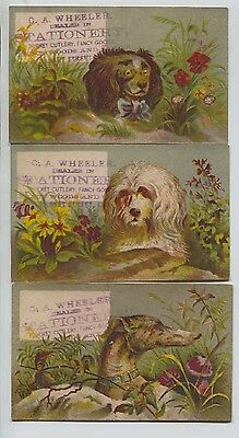 3 Victorian Trade Cards Dog Images C. A. Wheeler Stationery Lynn Massachusetts