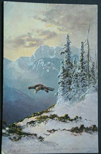 49528 Ak Hunting Auerhahn Cozy Über Den Mountains Winter Schneebedeckt 1903