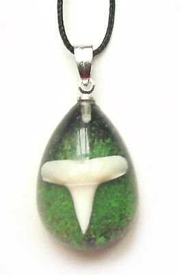 Shark Tooth Teeth Charm Necklace Pendant Surfer Tropical - Green