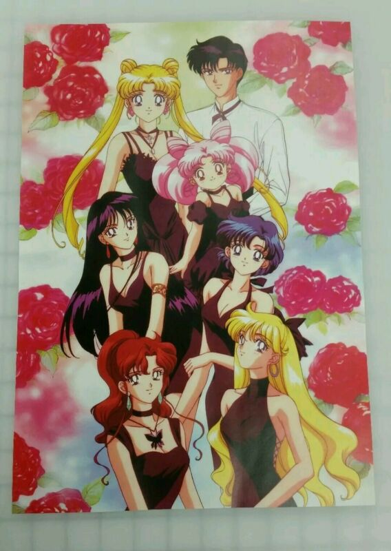 Sailor Moon Group Poster 11x17 laminated Roses