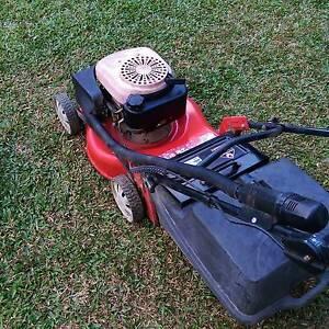 Rover lawn mower Edmonton Cairns City Preview