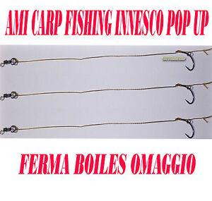 AMI LEGATI CARP FISHING N.2 TERMINALI FINALI CARPFISHING BOILIES BOILIE AGO - Italia - L'oggetto può essere restituito - Italia