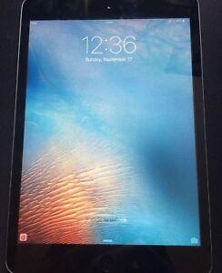 Ipad mini 2 (16 gb)
