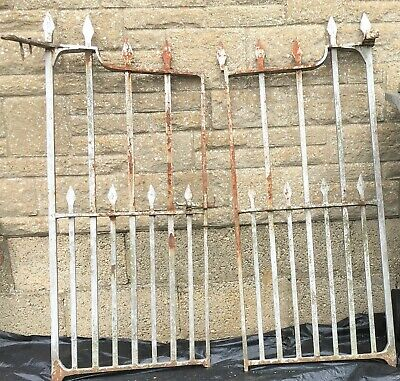 Pair 19th C Architectural Wrought Iron Gates (Each Gate W: 56cm H:130cm)