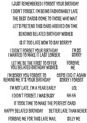 21 FUNNY BELATED BIRTHDAY SENTIMENTS CLEAR STAMPS-LATE/FORGOTTEN QUOTES-STAMP