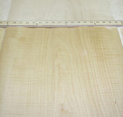 Curly Figured Maple Wood Veneer 24 X 48 With Peel Stick Psa Adhesive A Grade