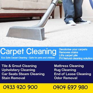 Best Carpet Steam Cleaning ( SAME DAY SERVICE)