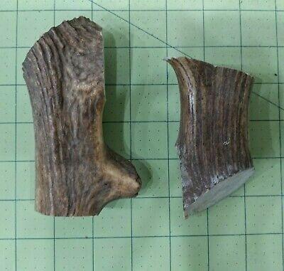 2 Deer Antler scrap pieces craft pendant horn furniture -