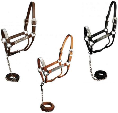 Leather + Silver Horse Show Halter + Lead w/ Chain Dark Brown Black Medium Brown