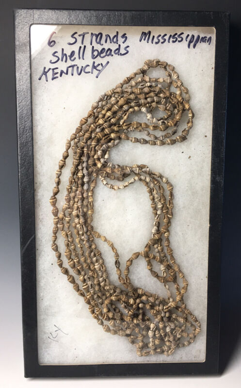 Lot of (6) Ancient Native American Mississippian Culture Shell Bead Necklaces KY