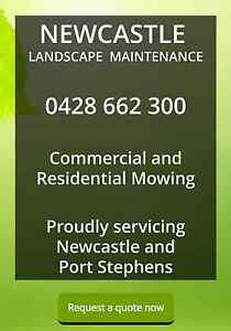 Lawn mowing and Handyman Service Newcastle Landscape Maintenance Medowie Port Stephens Area Preview
