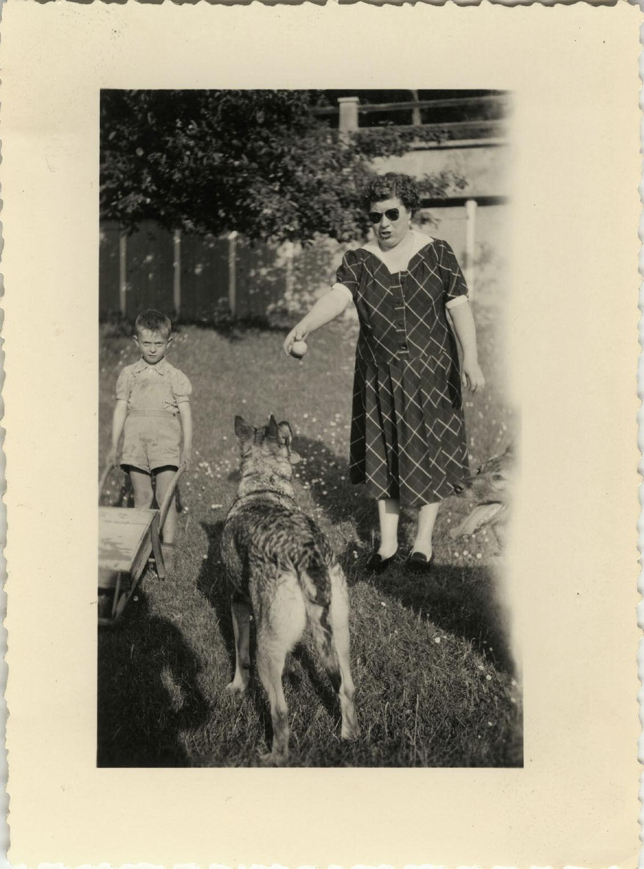 Photo ancienne - vintage snapshot - animal chien berger allemand ombre - dog 7