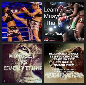 Learn Muay Thai Geelong Geelong City Preview
