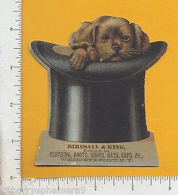 8863 Birdsall & King clothes hat & dog die-cut trade card Whitney's Point, NY