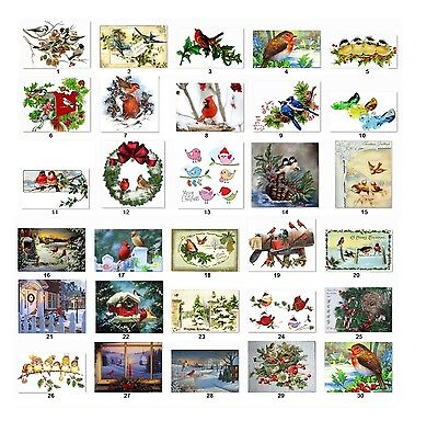 30 Personalized Return Address Christmas Birds Labels Buy 3 Get 1 Free Cs1