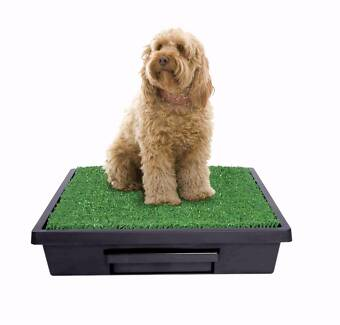 PET LOO - SMALL RRP $149.99 Rozelle Leichhardt Area Preview