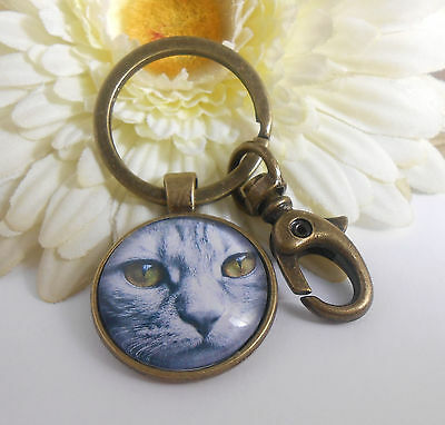 Schlüsselanhänger Taschenbaumler Katze gelbe Augen Glas Cabochon 25 mm