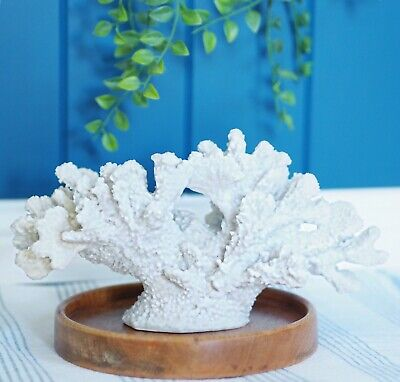 Beachcrest White Resin Table Coral 26.5cm(L)x15cm(H) Hamptons Coastal Home Decor