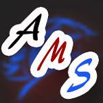 AutoMotorStripes