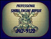 Professional Small Engine Repair (613)242-9122